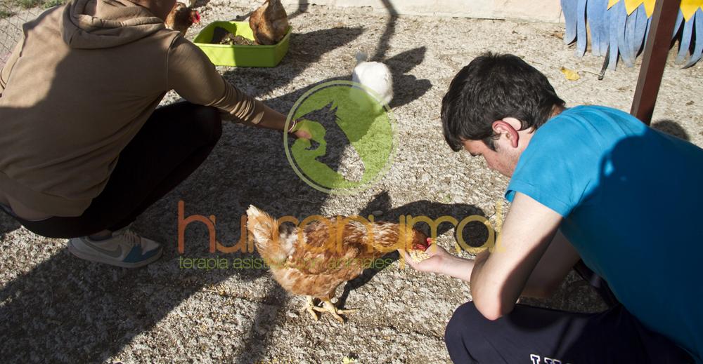 Humanymal_Terapia_Asistida_con_Animales_2013_03
