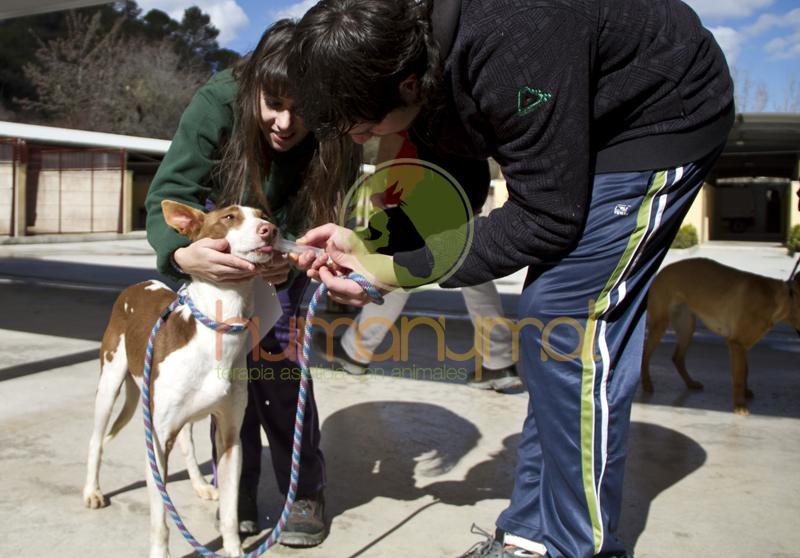 Humanymal_Terapia_con_animales_0027
