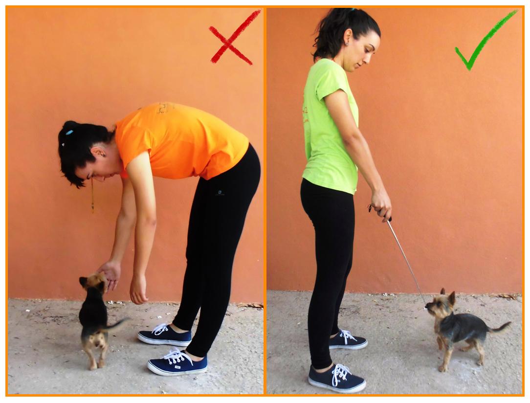 Humanymal_Terapia_Asistida_con_Animales_004