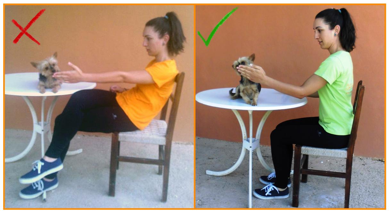 Humanymal_Terapia_Asistida_con_Animales_005