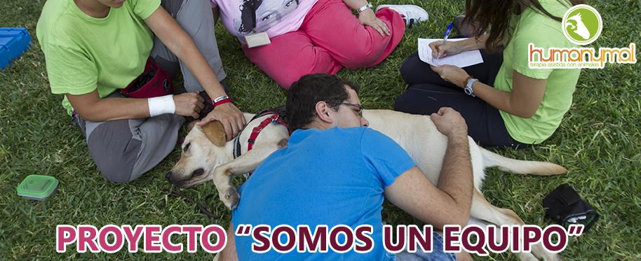 Banner_proyecto_somos_un_equipo_2014