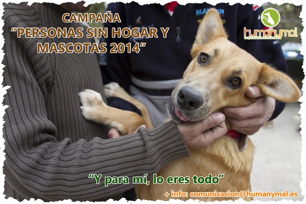 Foto_Campaña_Personas_sin_hogar_y_mascotas_2014