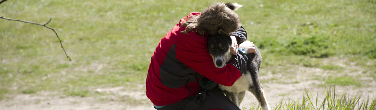 Terapia_asistida_con_animales_0024_humanymal