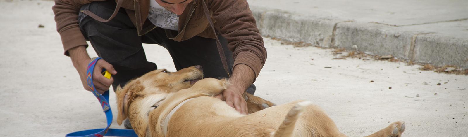 Terapia_asistida_con_animales_0026_humanymal