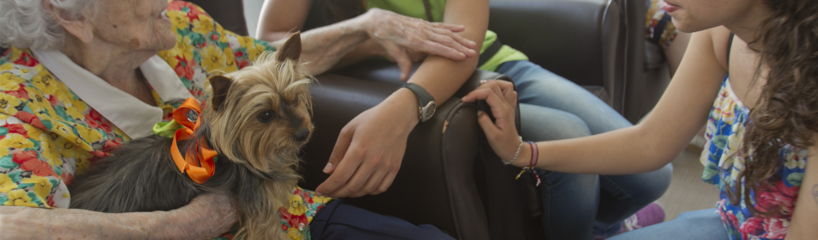 Terapia_asistida_con_animales_0027_humanymal