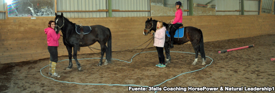3falls Coaching HorsePower & Natural Leadership3