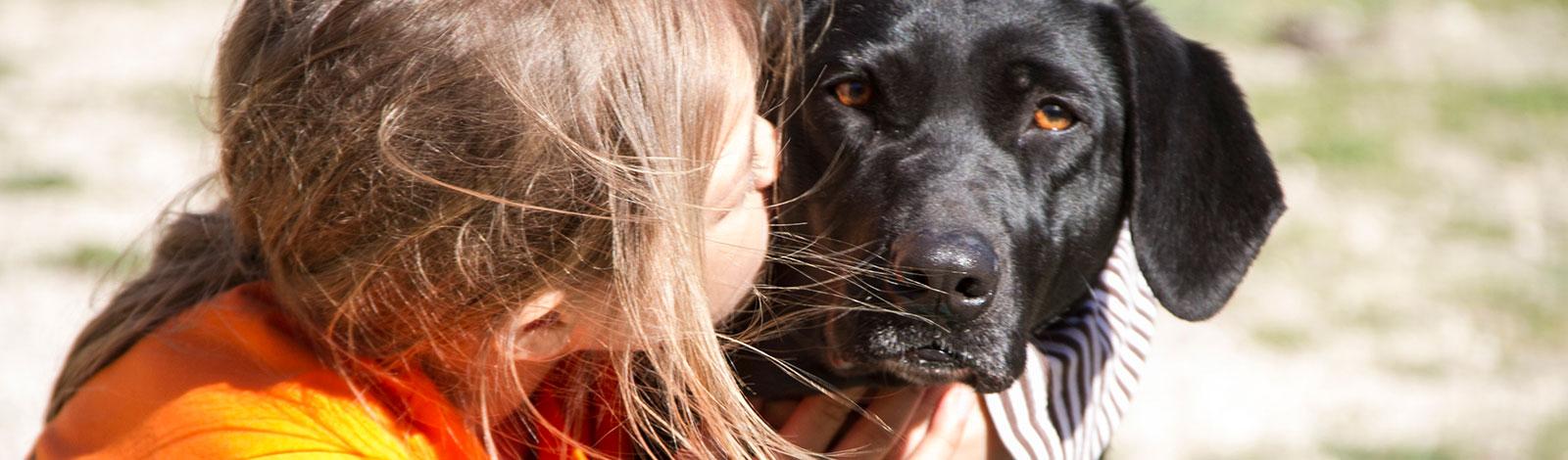 Terapia_asistida_con_animales_0055_humanymal