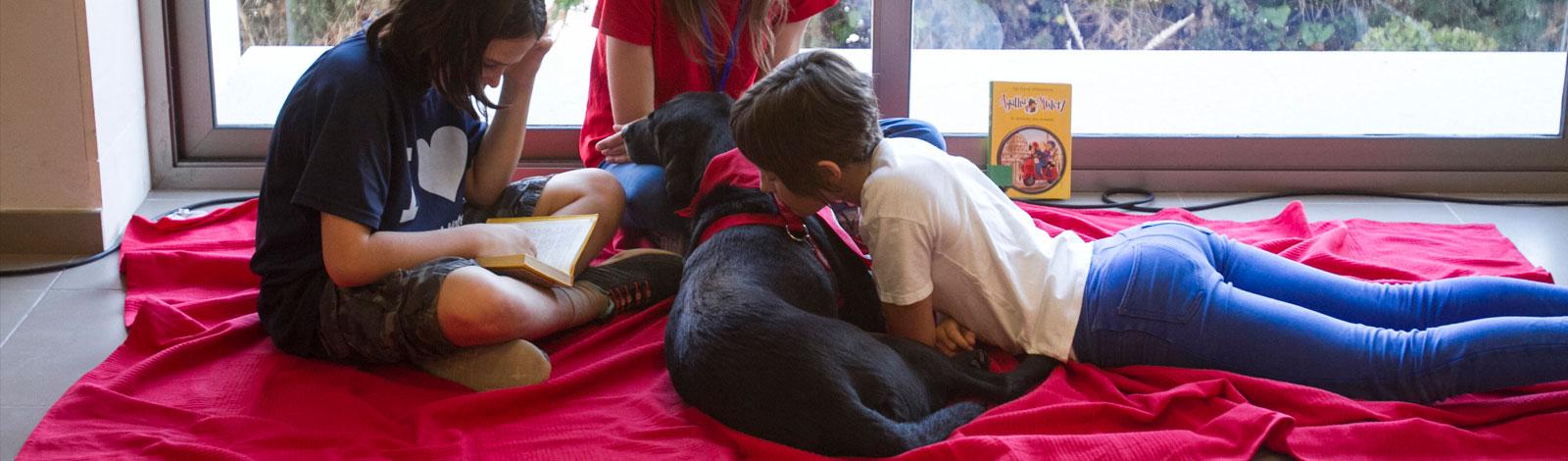 Terapia_asistida_con_animales_0058_humanymal